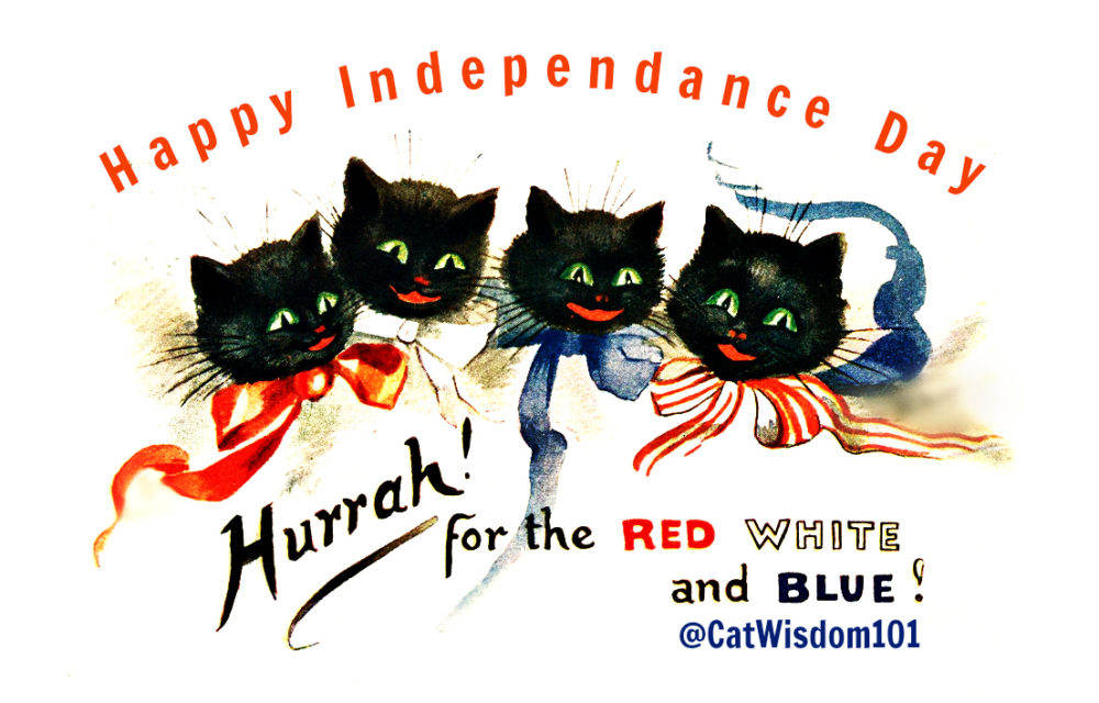 Vintage_july_cats_july4th