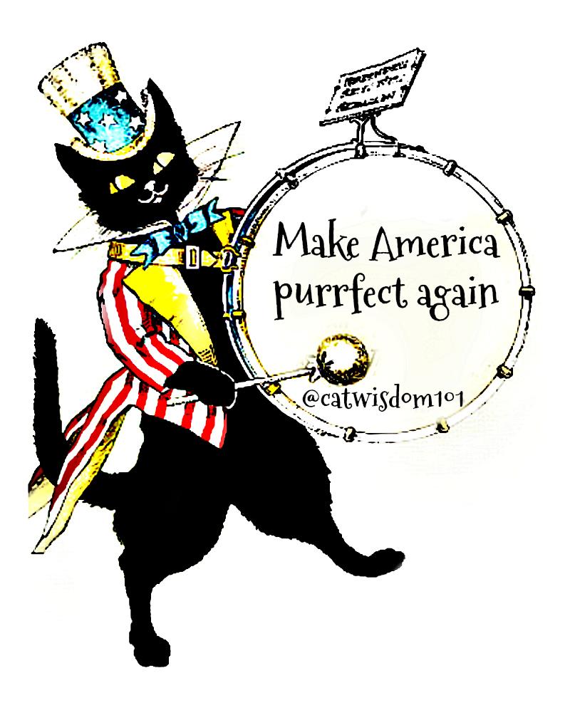 black_cat_Uncle_sam