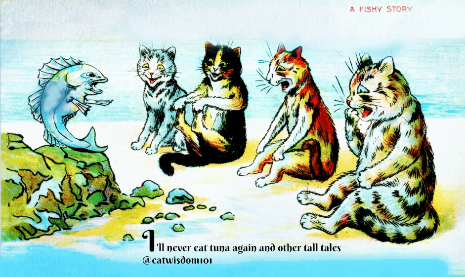 beachy_cat_cartoon_catwisdom101