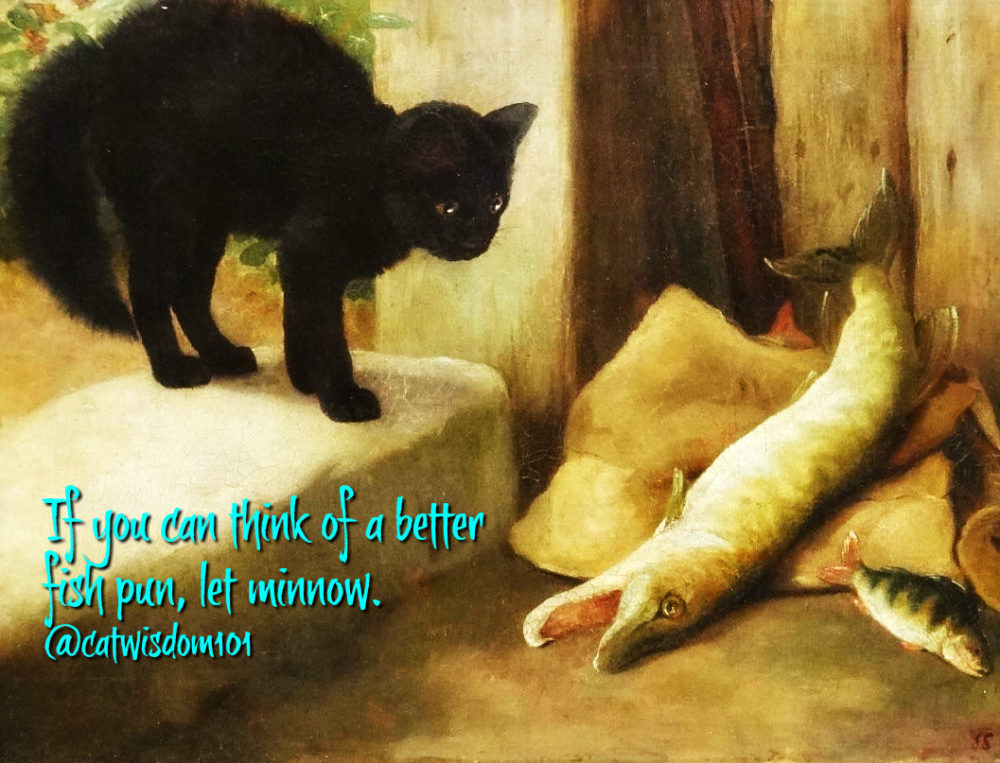 black_cat_fish_art_catwisdom101