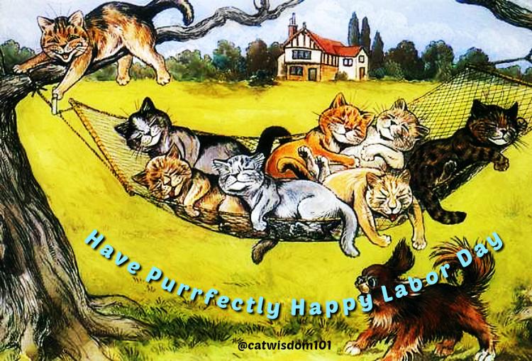 vintage_catnap_hammock_laborday_catwisdom101 Cats Get Ready For Key September Pet Holidays