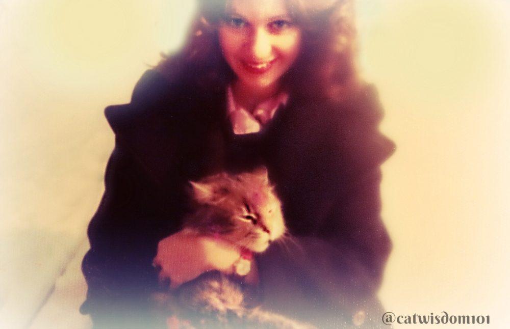 """Layla_cat_catwisdom101 """"1280 x 827"""""""