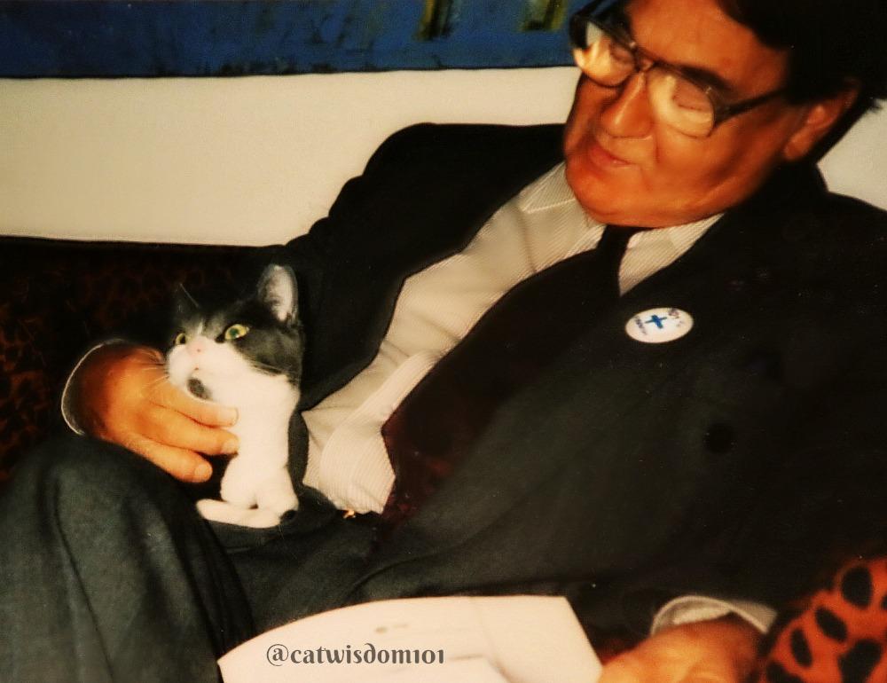 """cat_man_catwisdom101 """"1000 x 770"""""""