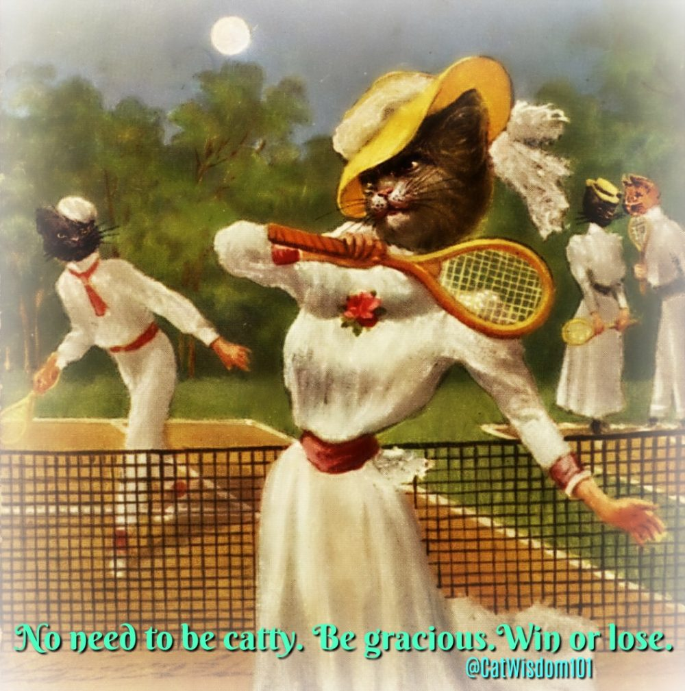 moon_tennis_cats_catwisdom101