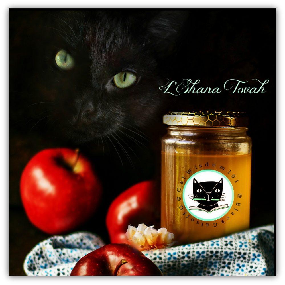 Sweet And Lucky Black Rosh Hashanah Cats Cat Wisdom 101