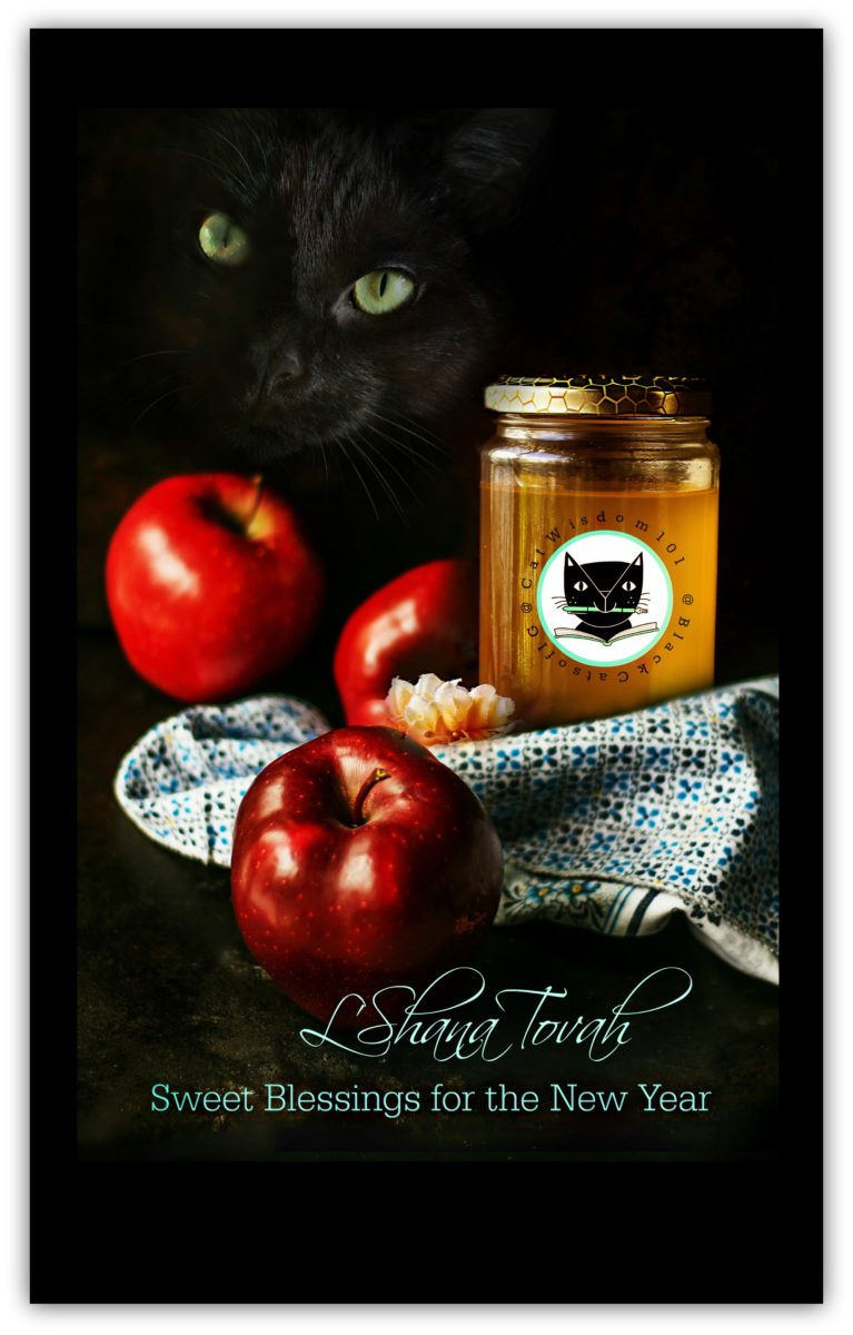 rosh_hashanah_catwisdom101_honey_apples_cat