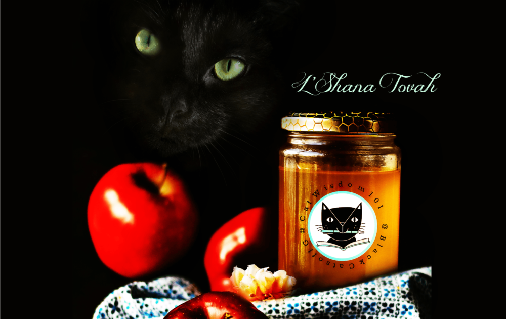 Sweet And Lucky Black Rosh Hashanah Cats