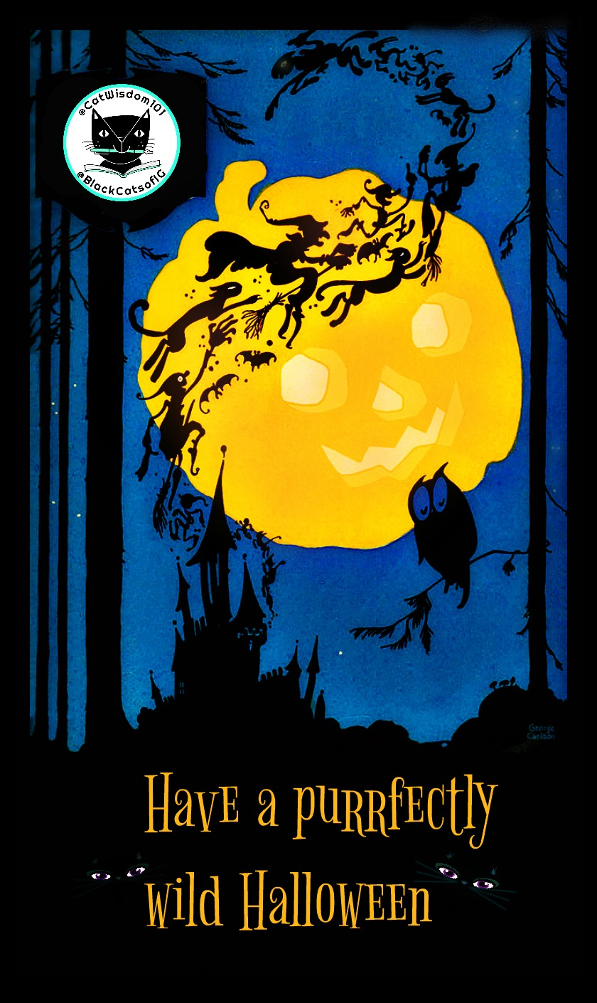 Halloween_witches_cats_pumpkin_moon