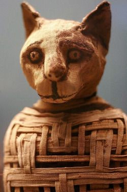 bastet_cat_mummy