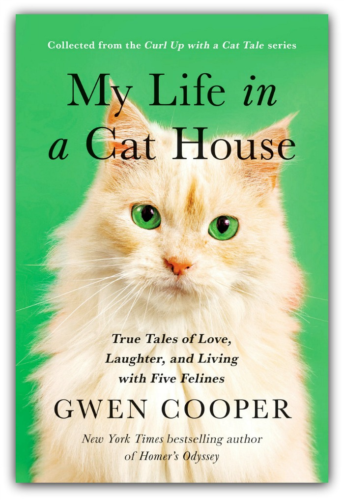 mylifeinacathouse_cooper_book_catwisdom101 Internet Cat Day And My Life In A Cat House