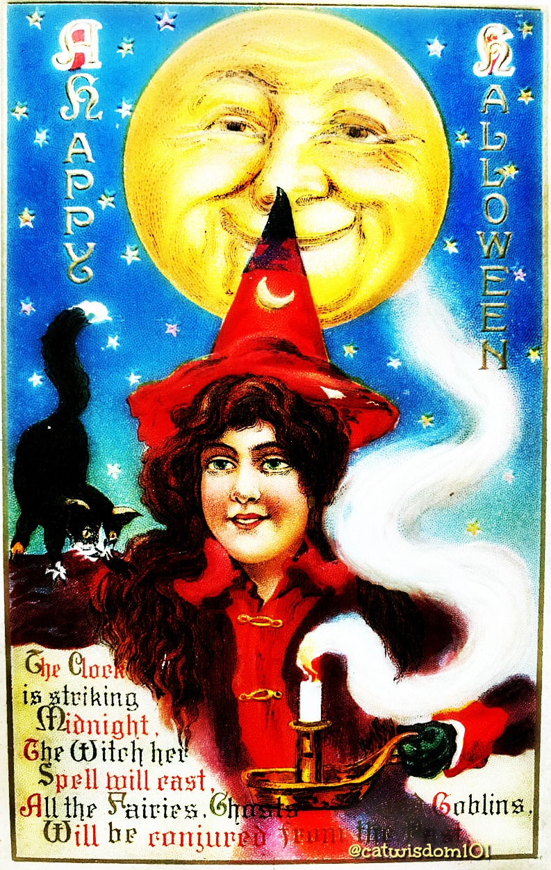 vintage_witch_moon_cat