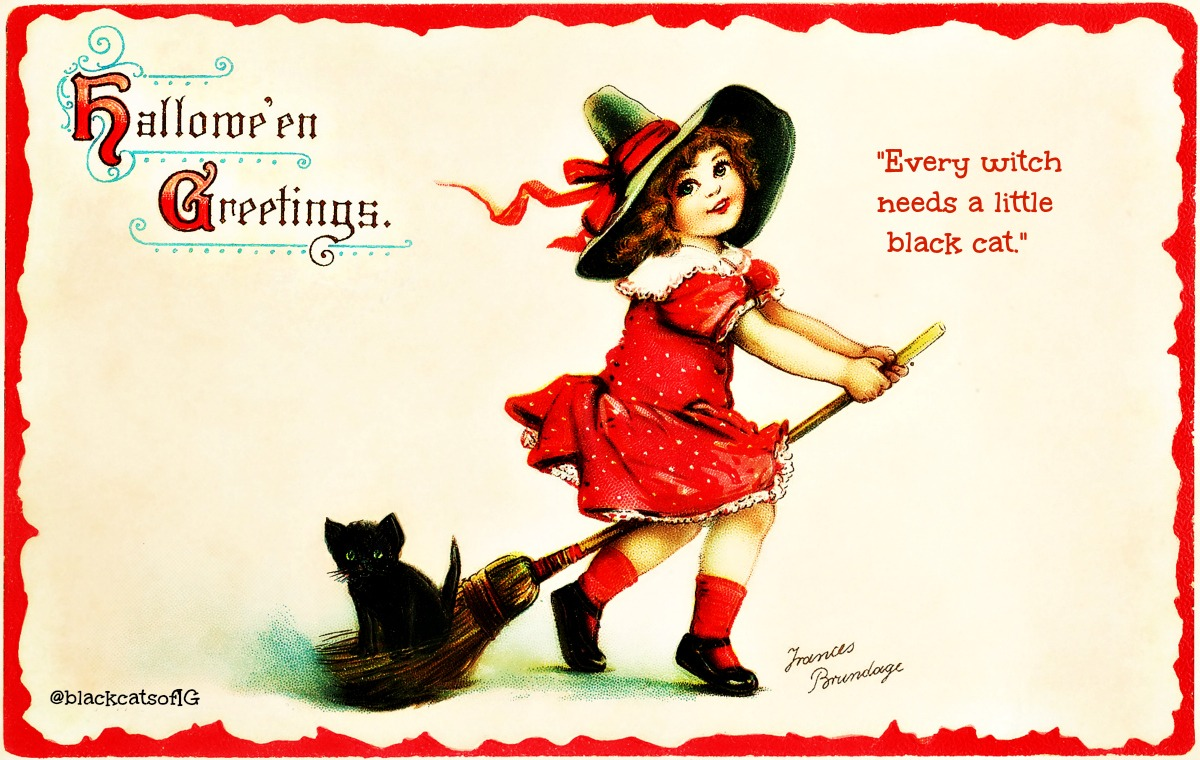 witch_girl_hallowee_kitten_catwisdom101