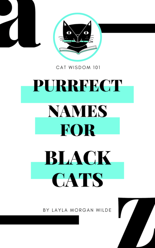 Purrfect_book_cover