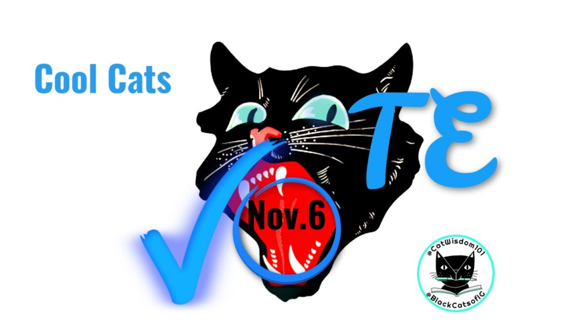 black_catvote Nov. 6 Cat Wisdom: 9 Reasons To Keep Calm And Vote