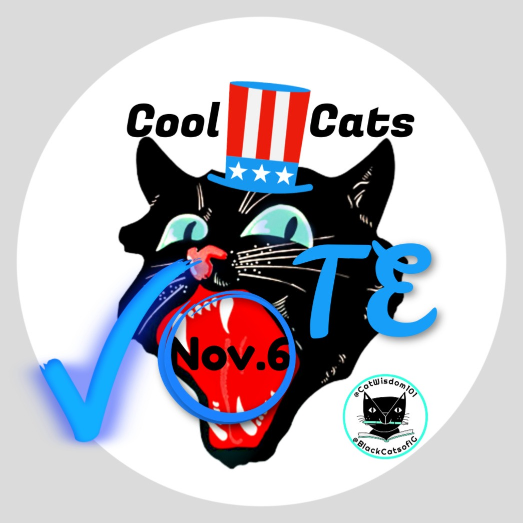 black_catvote_Catwisdom101 Nov. 6 Cat Wisdom: 9 Reasons To Keep Calm And Vote