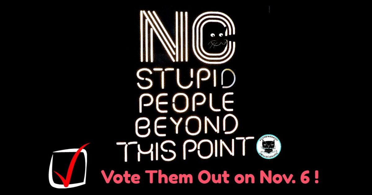 no_stupid_people_sign_vote_catwisdom101 Nov. 6 Cat Wisdom: 9 Reasons To Keep Calm And Vote
