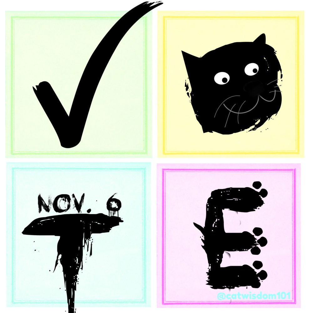 vote_2018_catwisdom101-e1541401581894 Nov. 6 Cat Wisdom: 9 Reasons To Keep Calm And Vote
