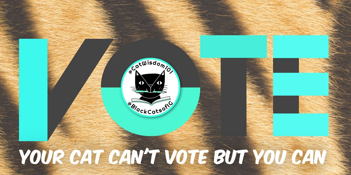 vote_cats-Catwisdom101 Nov. 6 Cat Wisdom: 9 Reasons To Keep Calm And Vote