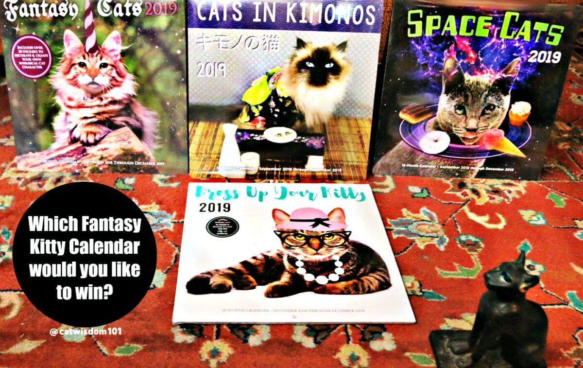 2019_calenders_catwisdom101 Cute Instagram Sweater Weather Cats + Cat Calendar Giveaway