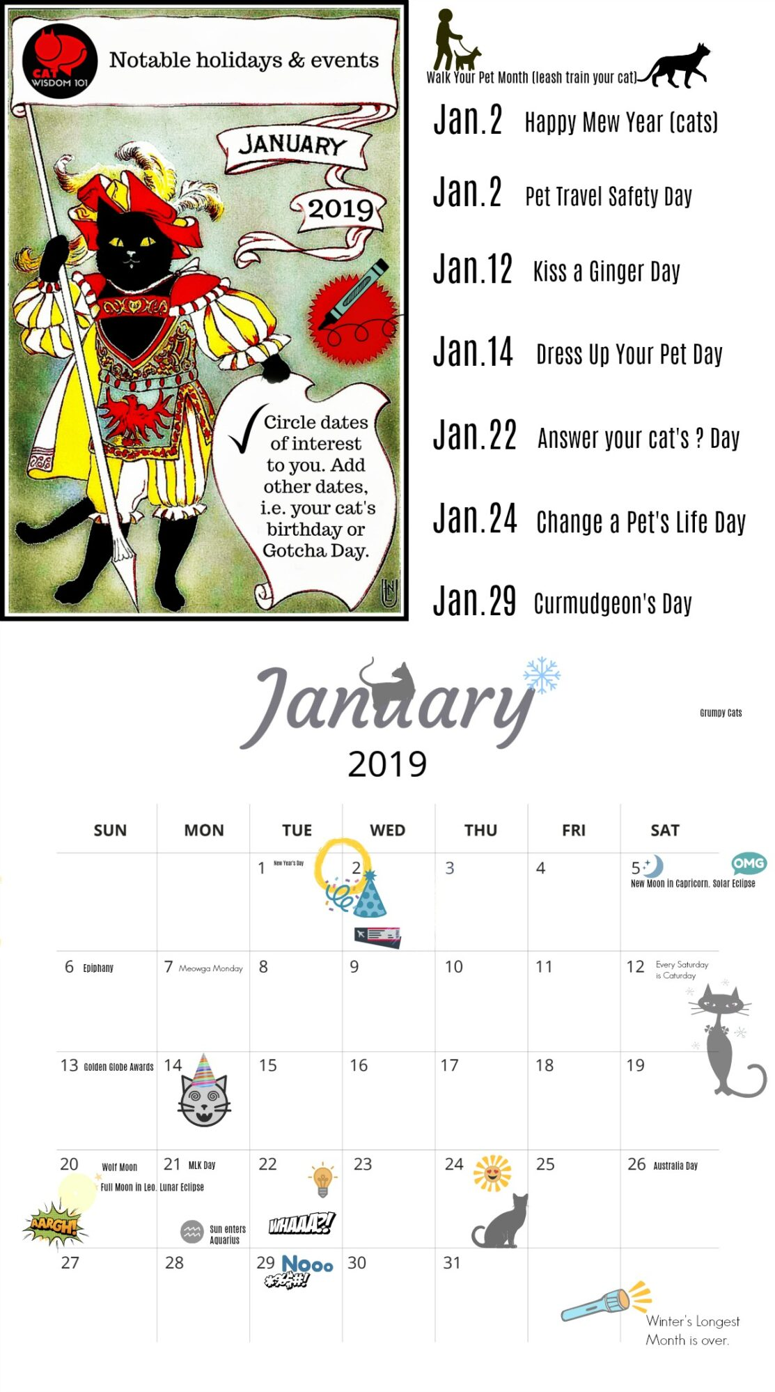 cat_pet_holiday_calendar_catwisdom101_january_2019