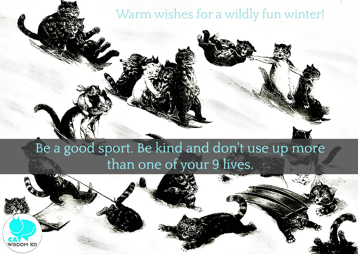 cats_snow_winter_quote_catwisdom101 2018 Best 9 and 2019 Printable Cat Holiday Calendar