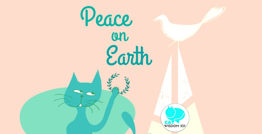 christmas_cat_peace_dove_catwisdom101