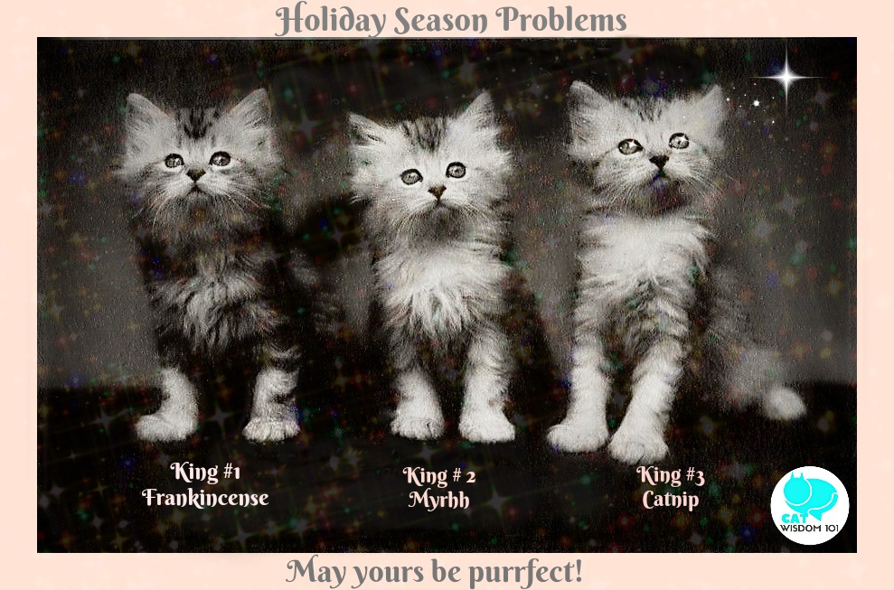 kitten_holiday_problems_catwisdom101-1 Adorable Holiday Season Problems With Kittens