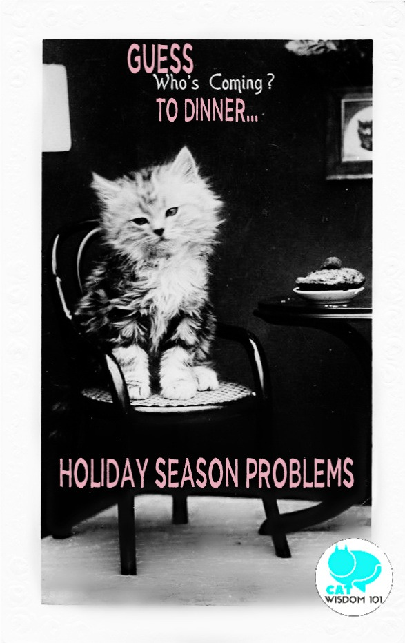vintage_catwisdom101_holidays Adorable Holiday Season Problems With Kittens