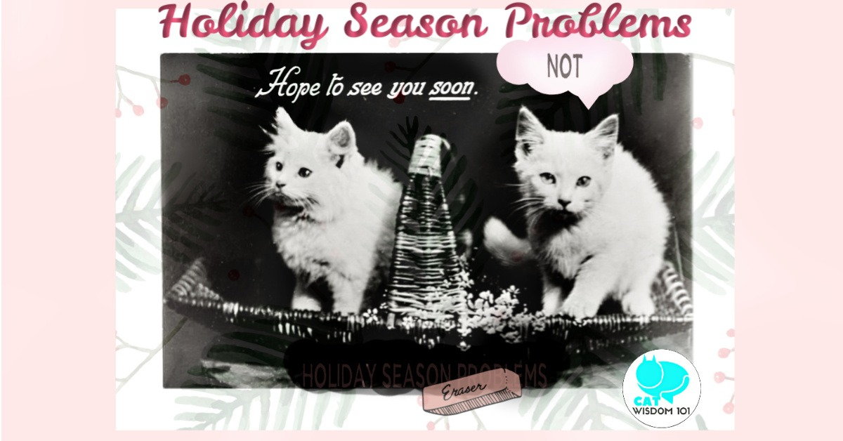 vintage_kittens_catwisdom101_holiday_problems