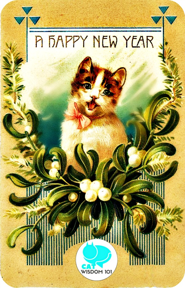vintage_newyear_catwisdom101 Cats, Vintage New Year's Cards and Diversity