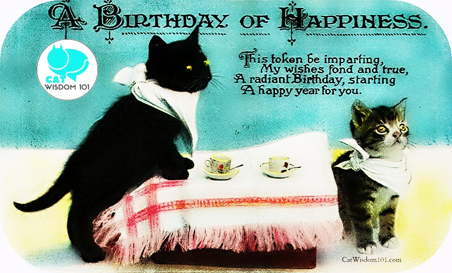 antique_cat_birthday_catwisdom101