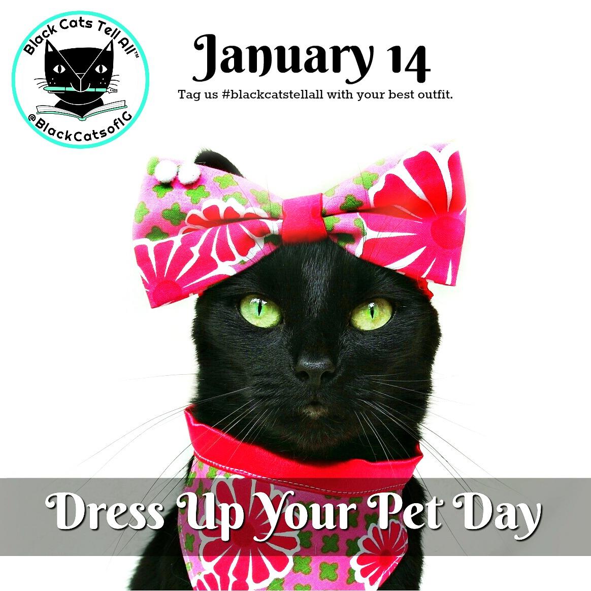 dress_up_your-pet_@catwisdom101