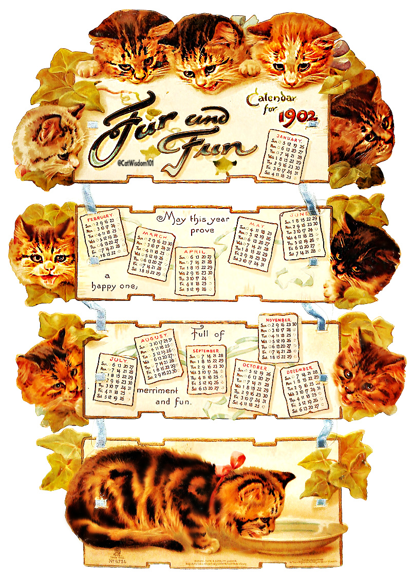 1902_cats_calendar_catwisdom101 Life Changing Super Full Moon Astrology Plus Creative Vintage Cat Calendars