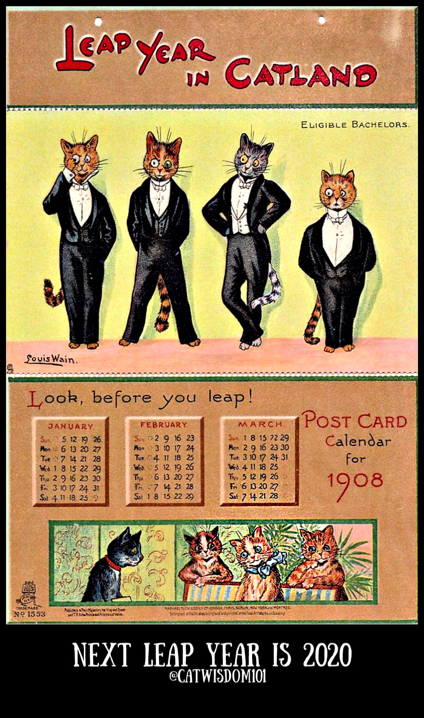 1908_calendar_leap_year_catwisdom101 Life Changing Super Full Moon Astrology Plus Creative Vintage Cat Calendars