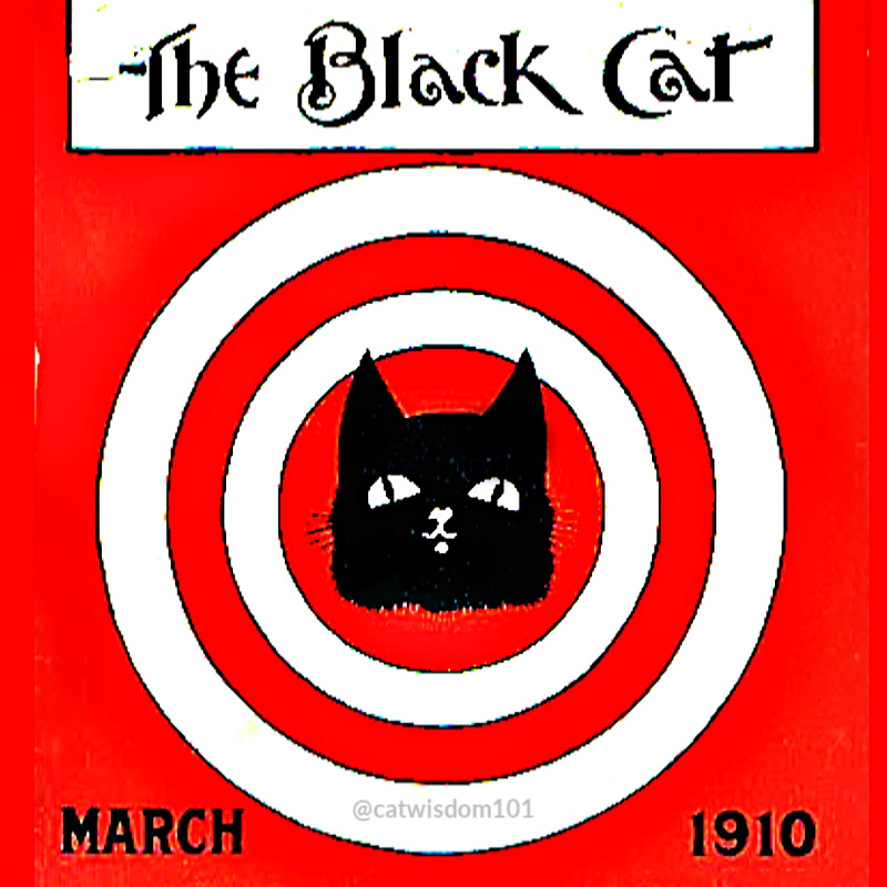 black_cat_march_1910_catwisdom101 March Madness Cats and Pet Holidays