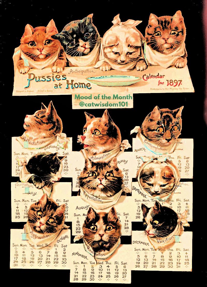 cats_calendar_mood_1897_catwisdom101