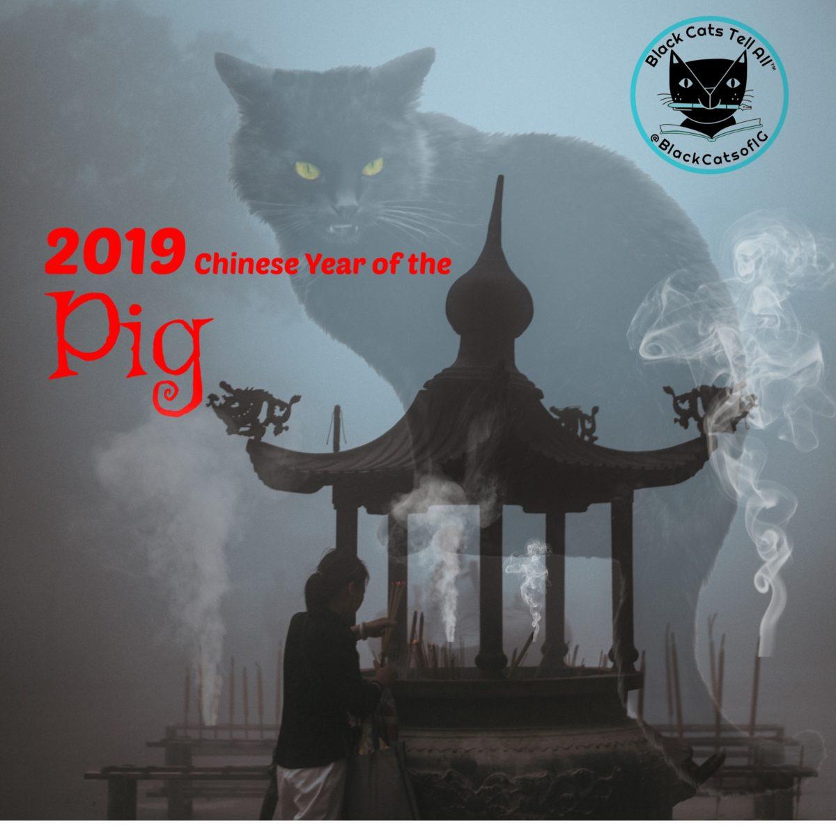 chinese_new_year_2019_catwisdom101