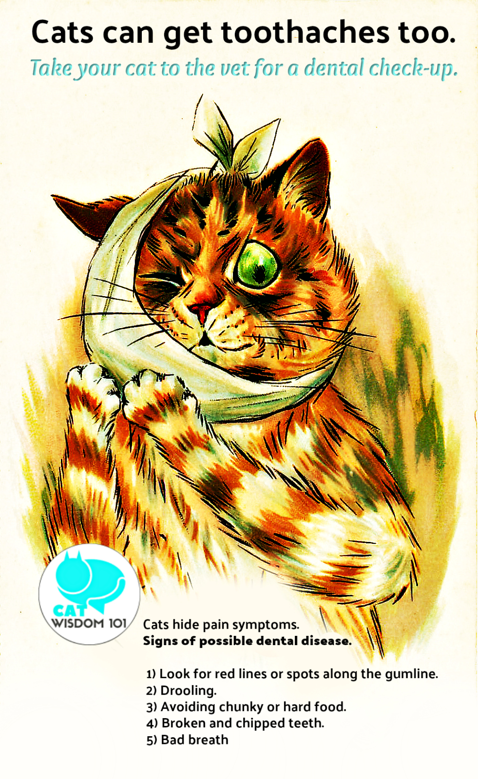 dental-cats Timely must-read Dental Advice About Cats