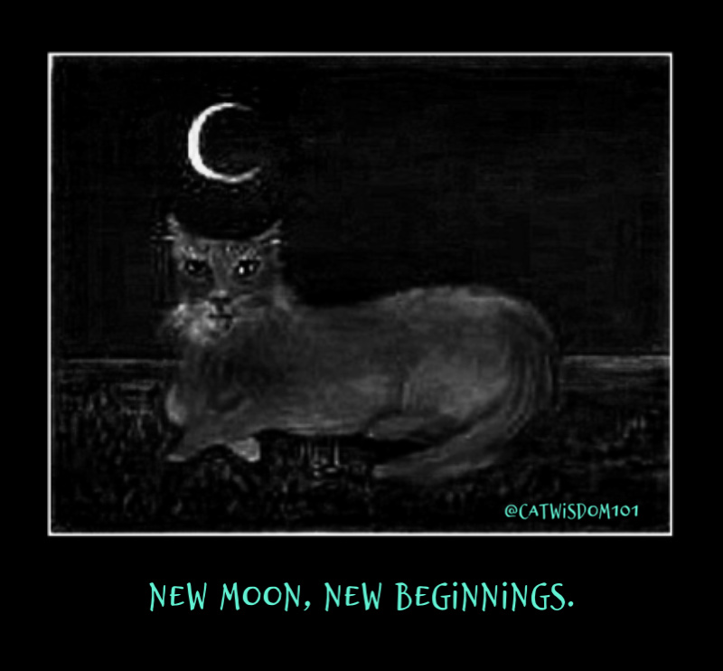 cat-art+abercrombie_moon_catwisdom101