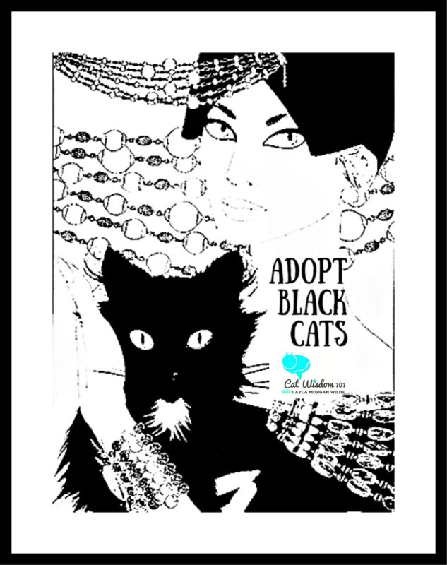 black_cat-art-psa