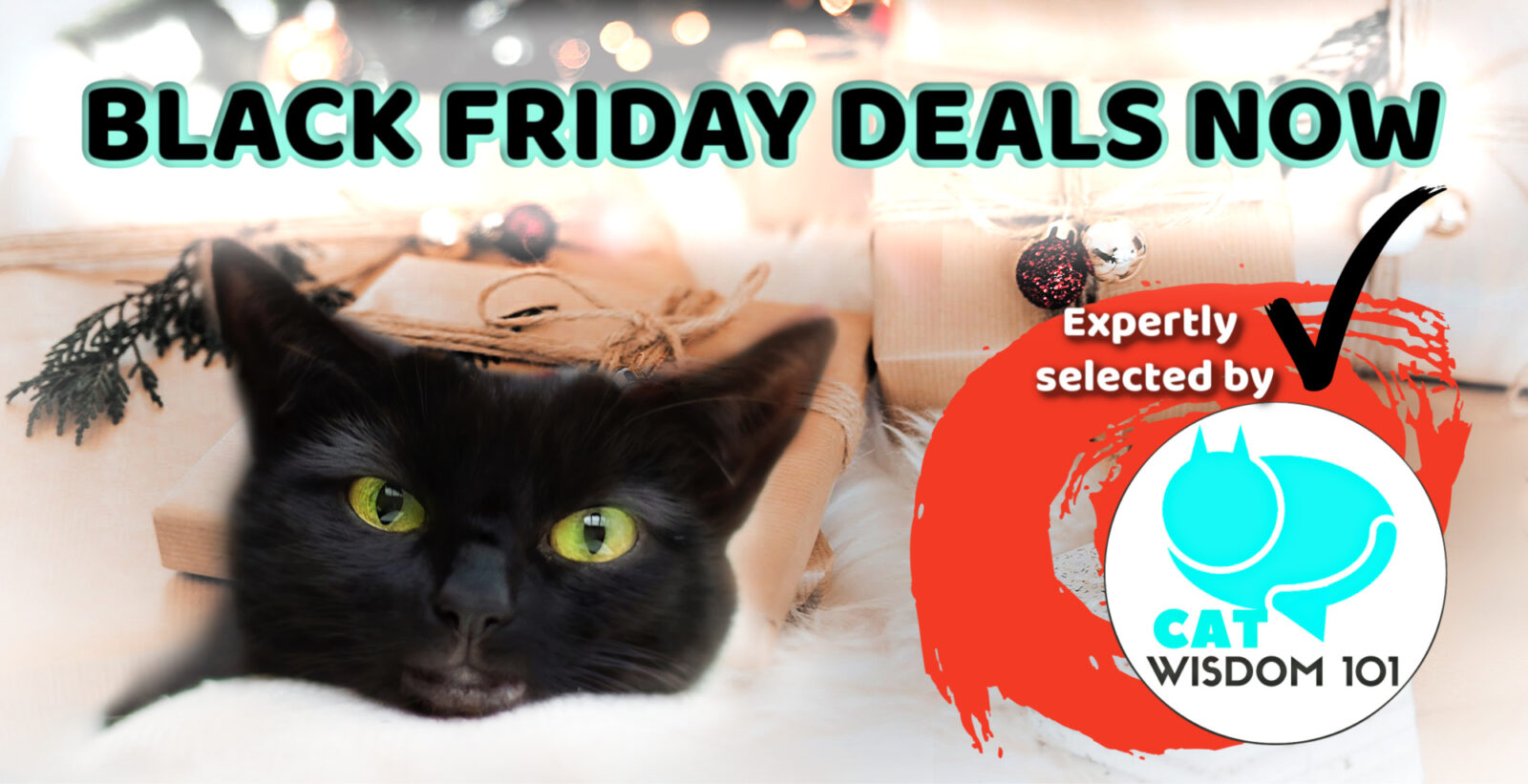 Black Cat Friday_deals_cat lovers