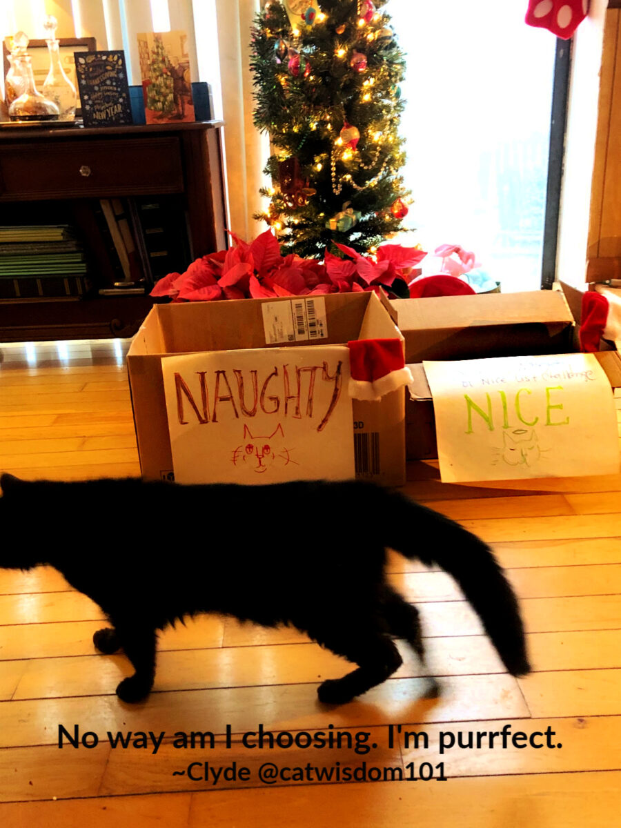 Naughty or nice box challenge