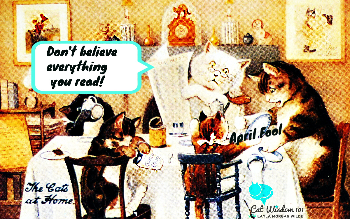 april fool's day-vintage cats