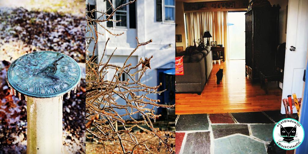 sundial icy branches door open
