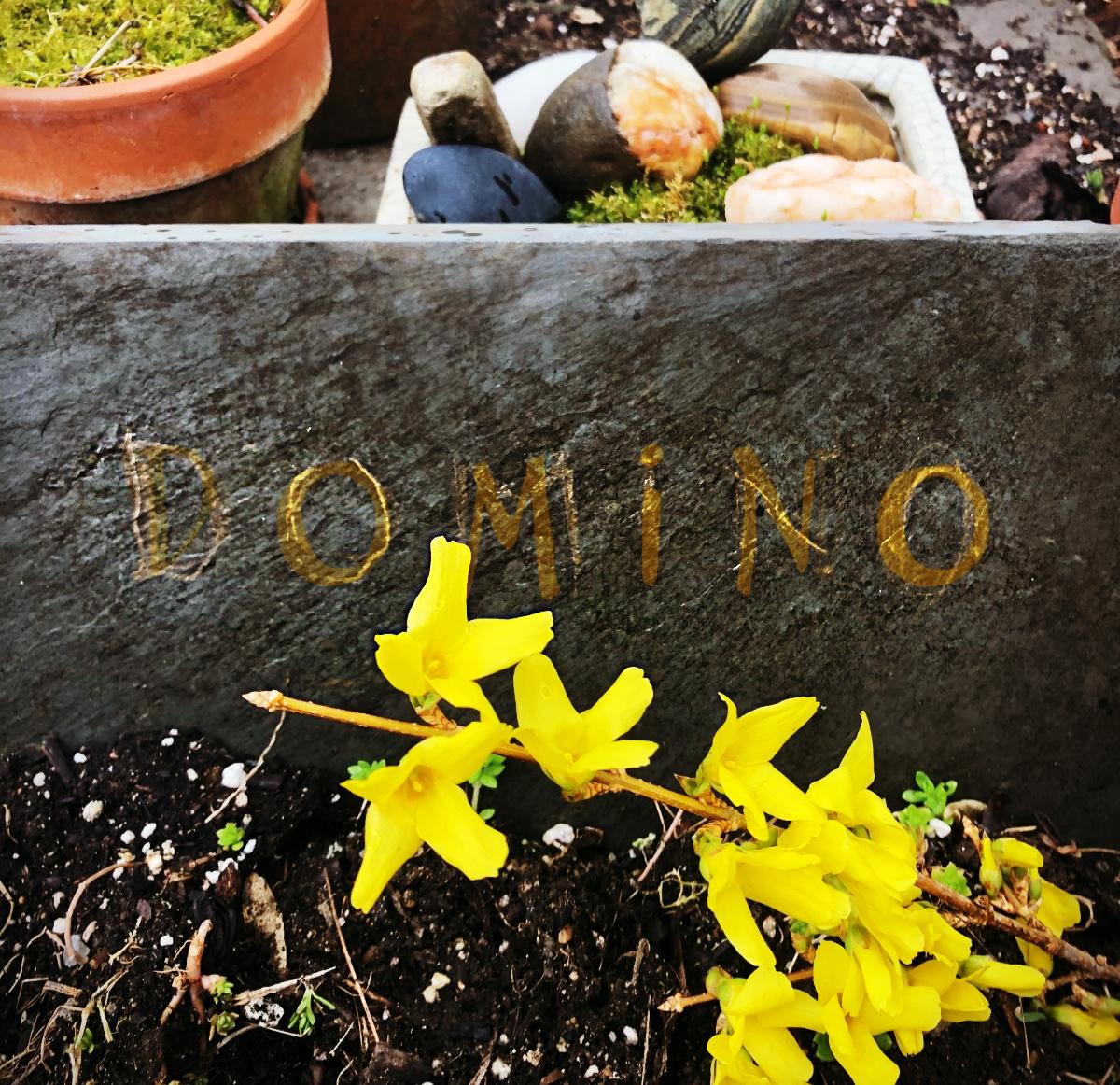 Domino-cat grave stone -memorial garden pets