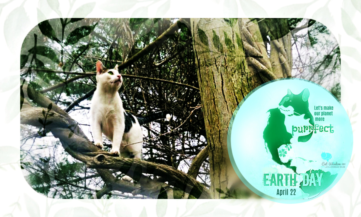Earth Day Cats in tree