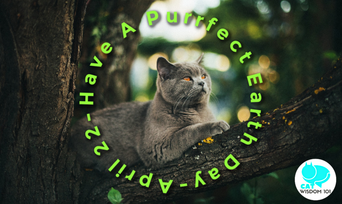 Earth Day card_catwisdom101