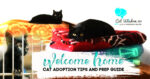 welcome home-cat adoption tips guide