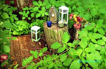 rustic cat grave memorial garden