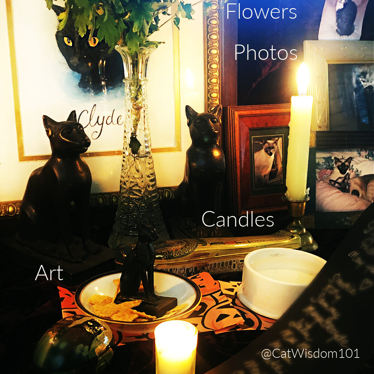 altar for cat lovers